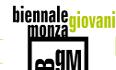 Biennale Giovani Monza 2017
