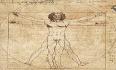 Leonardo, poliedrico artista e sistemista