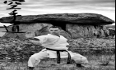 Seminario di Karate