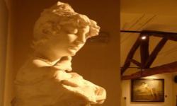 Ripartiamo dal Museo - visita guidata